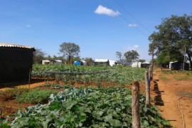 Justiça suspende liminar de reintegração de posse de fazenda em Capitão Enéas