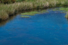 Projeto de preservação de nascentes da Serra do Espinhaço avança na ALMG