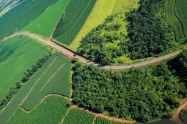 Projeto para estadualização da estrada entre Serra do Salitre e Carmo do Paranaíba avança na ALMG